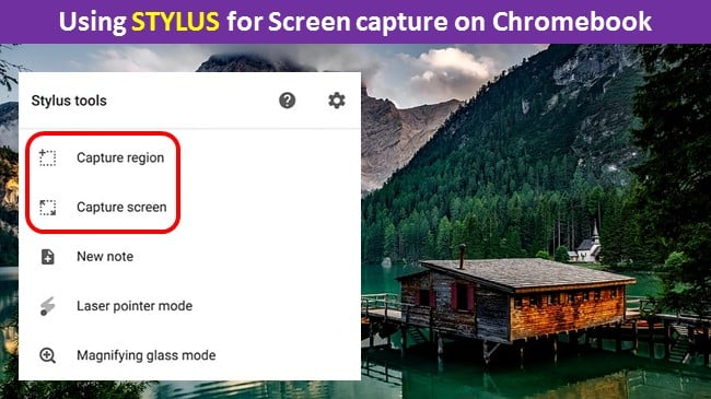 Using STYLUS for Screen capture on Chromebook